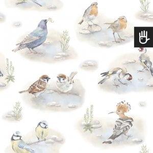 Tapeta polne ptaki z malowanymi ptakami na białym tle
