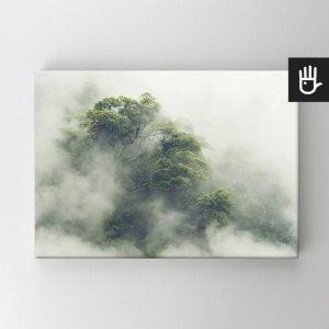 Obraz na płótnie bawełnianym z lasem tropikalnym w Japonii
