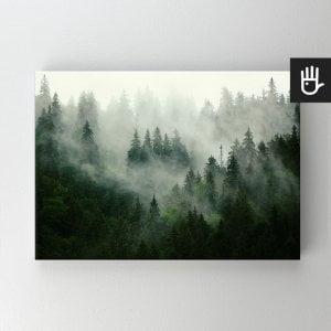 Obraz na płótnie bawełnianym z lasem we mgle