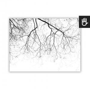 czarno-biały plakat z gałęziami na wietrze