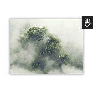 plakat z lasem tropikalnym w Japonii