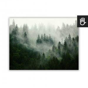 Plakat ścienny z Lasem we mgle