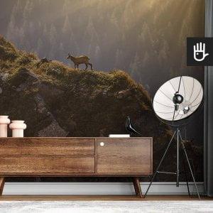 wnętrze nowoczesnego salonu z brązową komodą na tle fototapety Kozice górskie