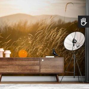 wnętrze nowoczesnego salonu z brązową komodą na tle fototapety Słońce w trawie