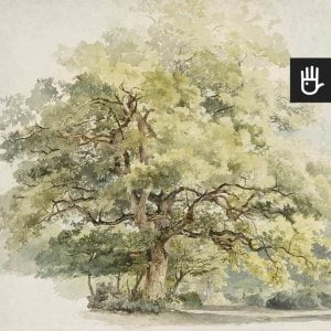 detal z fototapetą akwarelowe drzewo