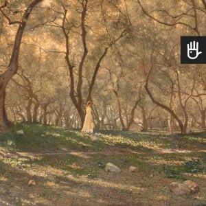 Fototapeta Pod oliwnymi drzewami z dziewczyną w słonecznym ogrodzie
