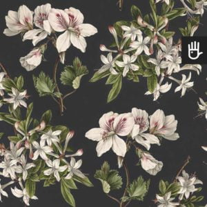 Tapeta Kwiaty azalii i pelargonia