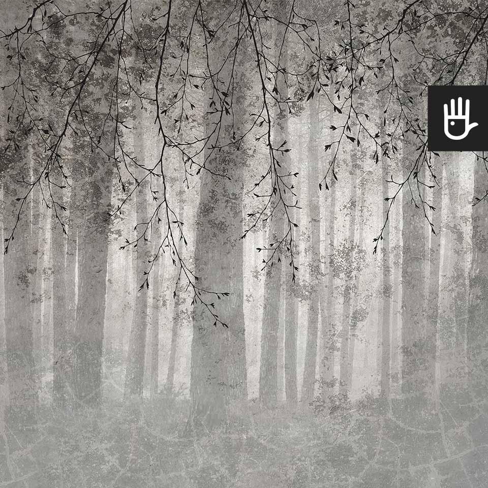 Fototapeta Echo lasu z leśnym motywem i gałęziami w szarej tonacji w kolorze betonu