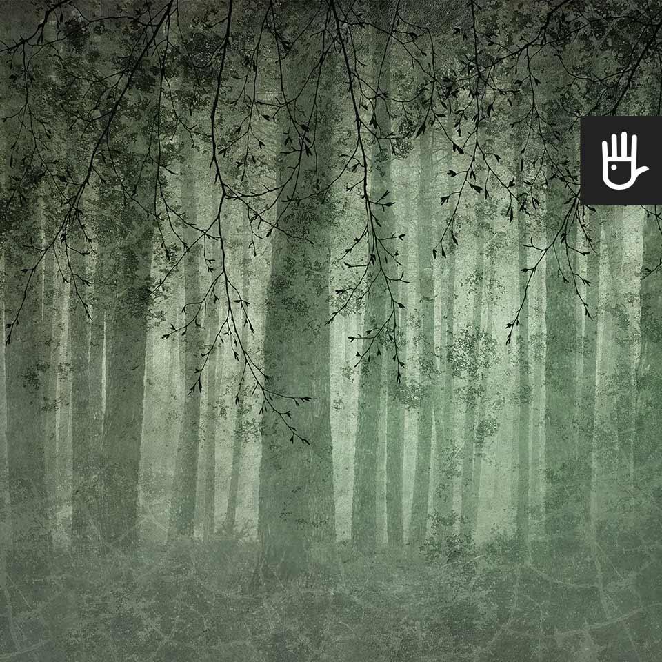 Fototapeta zielone Echo lasu z leśnym motywem i gałęziami w ciemnej tonacji w kolorze butelkowej zieleni