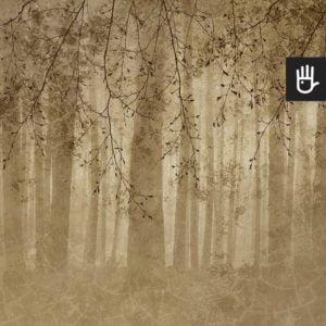 Fototapeta złote Echo lasu z leśnym motywem i gałęziami w jasnej tonacji w kolorze złota
